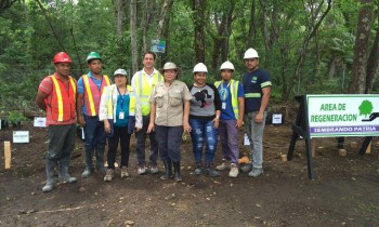 Pacadar Panama gets involved and takes part in an environmental sustainability project